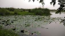 Yamuna Biodiversity Park loni