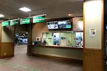Bijodaira, Tateyama-machi, Japan