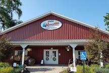 Stokes Homestead Farm Market, Grand Junction, United States