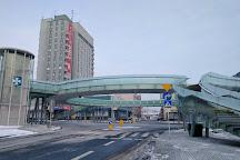 Okragla kladka dla pieszych, Rzeszow, Poland