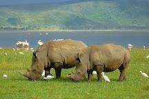Tropical Wild Expeditions, Nairobi, Kenya