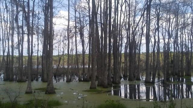 Donnelley Wildlife Management Area