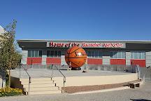 Thomas & Mack Center, Las Vegas, United States