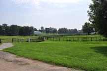 Claiborne Farm, Paris, United States