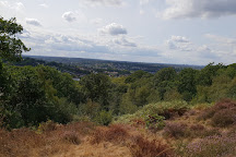 Croham Hurst Woods, Croydon, United Kingdom