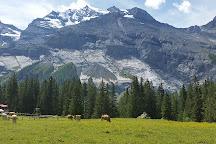 Rodelbahn Oeschinensee, Kandersteg, Switzerland