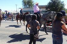 Rex Allen Arizona Cowboy Museum, Willcox, United States