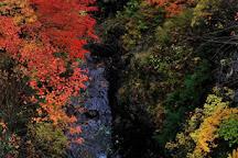 Mt. Amakazari, Itoigawa, Japan