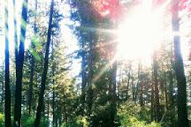 English Point Recreation Area, Hayden Lake, United States