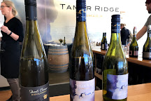 Tamar Ridge Cellar Door, Rosevears, Australia