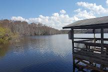 Trout Lake Nature Center, Eustis, United States