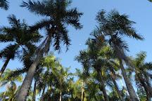 Palmentuin, Paramaribo, Suriname