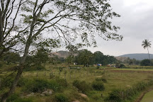 Nilavoor Lake, Yelagiri, India