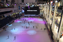 Dubai Ice Rink, Dubai, United Arab Emirates