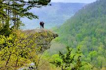 Hawk's Bill Crag / Whitaker's Point Trailhead, Ponca, United States