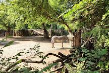 Zoo Boise, Boise, United States