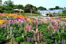 New York Lamp Museum & Flower Garden, Ito, Japan