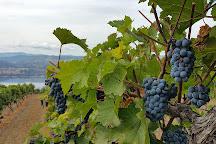Lang Vineyards, Naramata, Canada