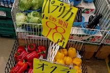 Pulala Tenma, Osaka, Japan