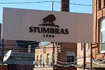 Stumbras Museum, Kaunas, Lithuania