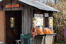 Baldwin Farms, Richmond, United States