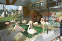 Tierpark und Fossilium Bochum, Bochum, Germany