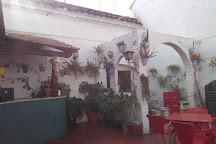 Bar Latino, Utrera, Spain