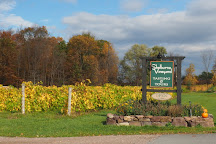 Shelburne Vineyard, Shelburne, United States