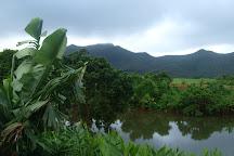 Domaine des 7 Vallees, Vacoas, Mauritius