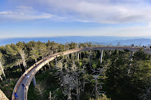 Clingmans Dome, Great Smoky Mountains National Park, United States