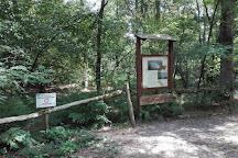 Parco dei Lagoni di Mercurago, Dormelletto, Italy