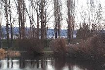 Lac de Vesoul-Vaivre, Vesoul, France