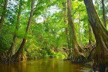 Autauga Creek Canoe Trail, Prattville, United States