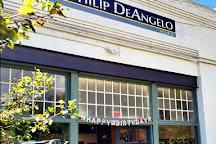 Philip DeAngelo Studio, Asheville, United States