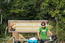 Hala-Bala Wildlife Sanctuary, Sukhirin, Thailand