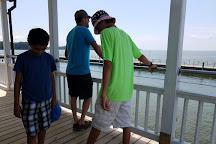 Edenton Bay Cruises, Edenton, United States