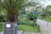 Botanische Tuin Amsterdam : Excursie naar hortus botanicus amsterdam met wilde weelde iris