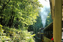 State Forest Railways of Lillafured, Miskolc, Hungary