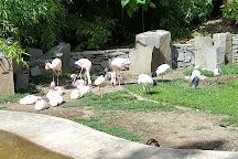Oregon Zoo, Portland, United States