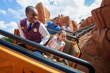 Disney VIP Tours, Orlando, United States
