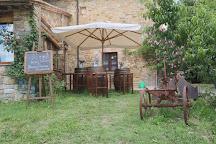 Sant'Agnese Farm, Castellina In Chianti, Italy