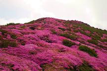 Mt. Hijidake, Taketa, Japan
