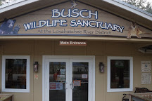 Busch Wildlife Sanctuary, Jupiter, United States