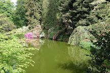 Parco della Burcina, Pollone, Italy