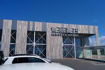 Hakodate Tsutaya Books, Hakodate, Japan