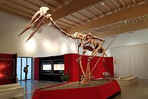 Dinosaurier Museum Altmuhltal, Denkendorf, Germany