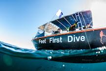Feet First Dive, Nelson Bay, Australia