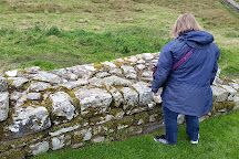 Housesteads Fort and Museum - Hadrian's Wall, Haydon Bridge, United Kingdom