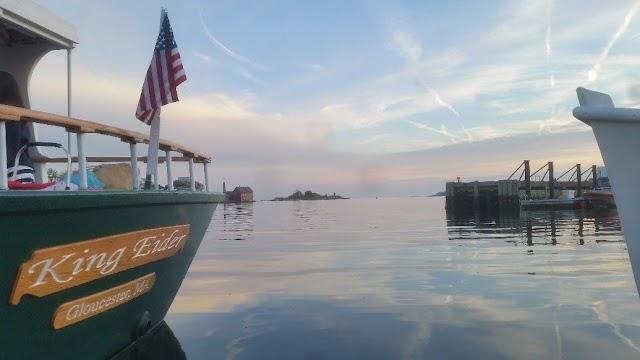 Harbor Tours
