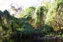 Canoe Outpost - Little Manatee River, Wimauma, United States